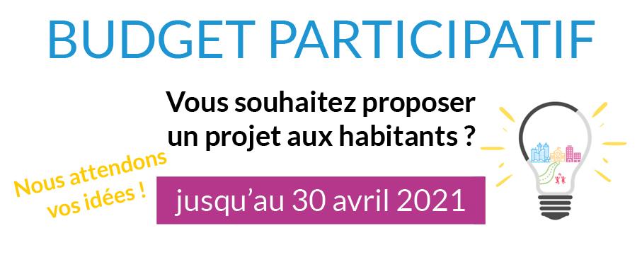 Encart site internet - Budget participatif