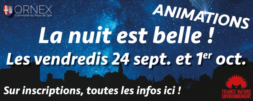 Encart site internet Anim Nuit est belle